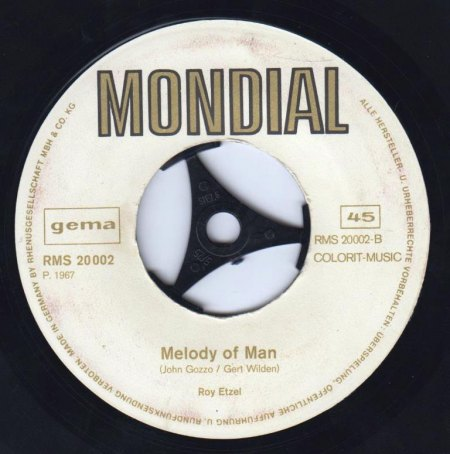 ROY ETZEL - Melody of man -B-.jpg