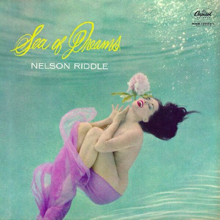 Riddle,Nelson11Sea of dreams.jpg