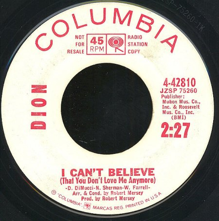 DION - I can't believe -A1-.jpg